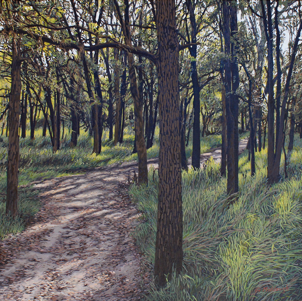 forest bathing, palmetto state park