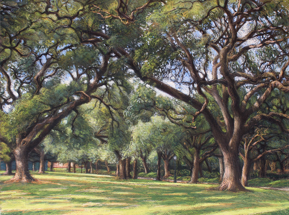 broadacres park, houston