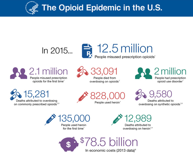 Infographic by the U.S. Department of Health and Human Services    Sources:  2015 National Survey on Drug Use and Health (SAMHSA);  MMWR, 2016; 65(50-51);1445–1452 (CDC);  Prescription Overdose Data (CDC); Heroin Overdose Data (CDC); Synthetic Opioid Data (CDC); The Economic Burden of Prescription Opioid Overdose, Abuse, and Dependence in the United States, 2013.
