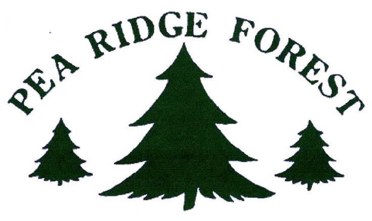 Pea Ridge.jpg