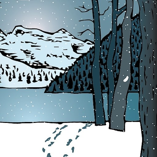 Through the woods... across the lake... over the hills... beyond the giants... #snow #winter #winternight #illustration #inspiredbynature #blues #winterevening #hiking #artistsoninstagram #illustratorsofcanada #drawing #camping #outdoors #mountains #illustrator #graphic #nature #natureart