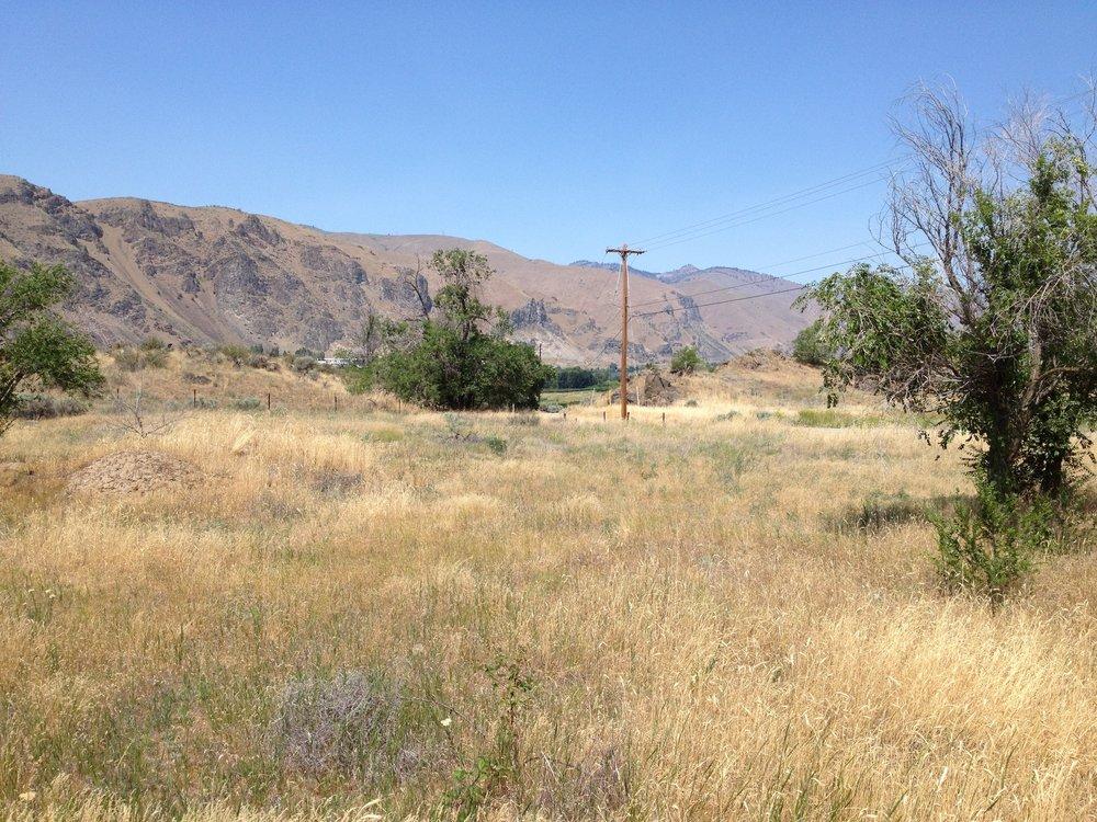 Brender Creek site visit 2013
