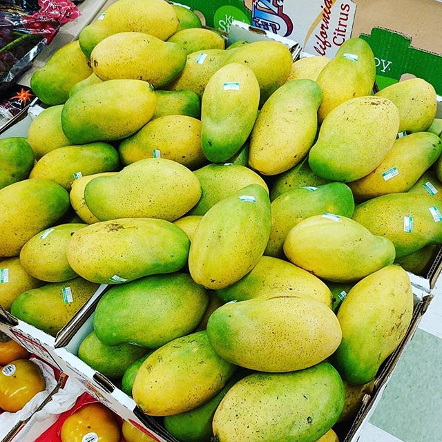 They're back! Beautiful Haitian Mangoes now available at #FruitTreeFarm