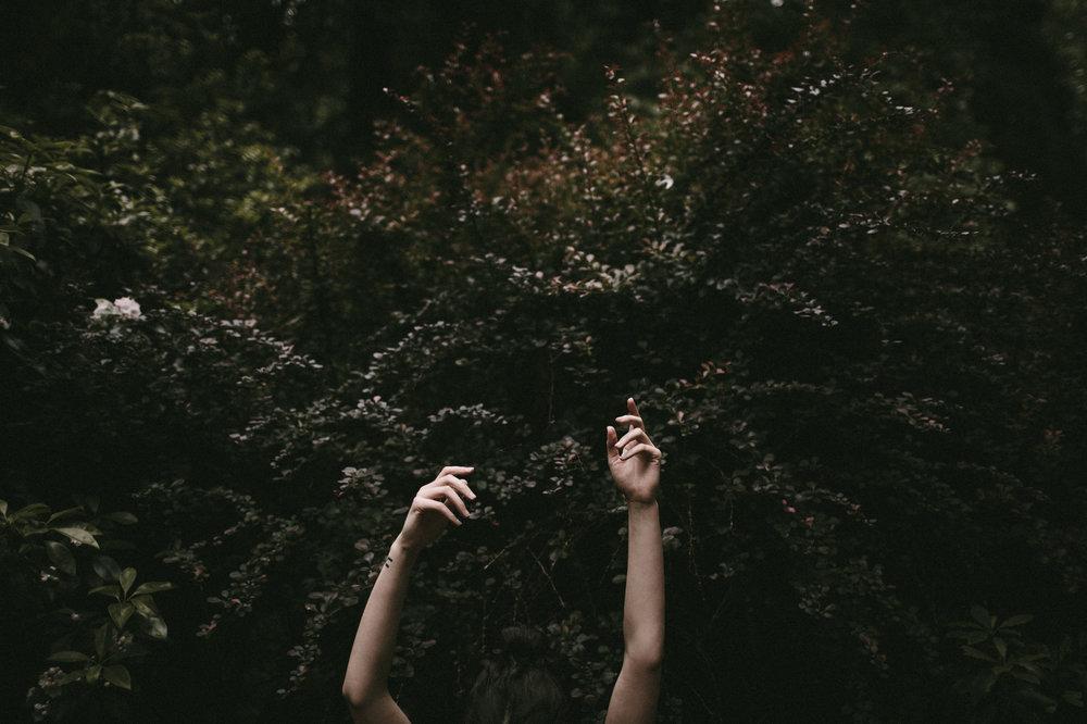 Hands+Plants.jpg
