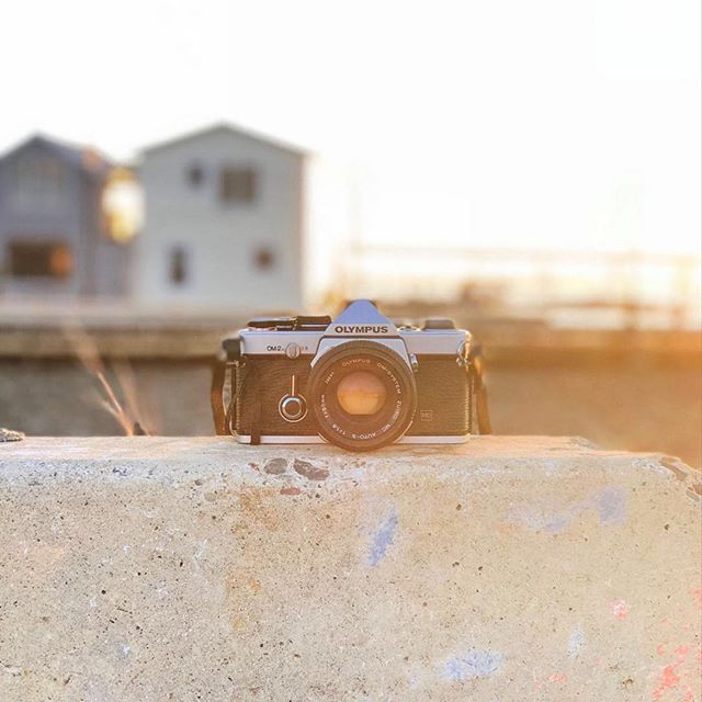 The time it takes for film photos to develop makes them more special. Agree? 📷⠀ ⠀ #filmphotography #film #photography #oldtechnology #creativeminds #retrotech #retrophotography