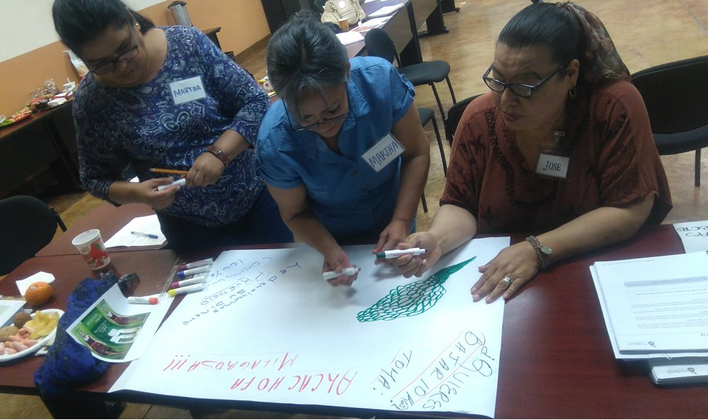 Meta Salud Diabetes trains community health center staff to facilitate exercises that help identify resources for a mmore holistic focus on community health