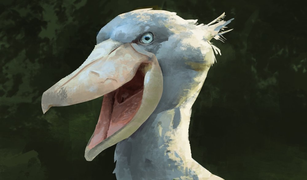 Practicing with a particular brush and adjustment layers with a study of the terrifyingly awesome ShoeBill