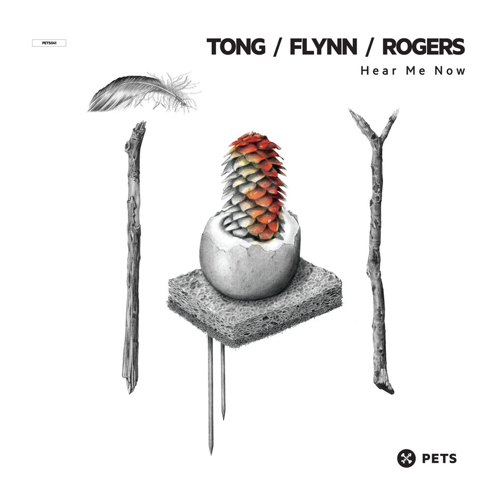 Tong & Flynn & Rogers - Hear Me Now EP [PETS041]
