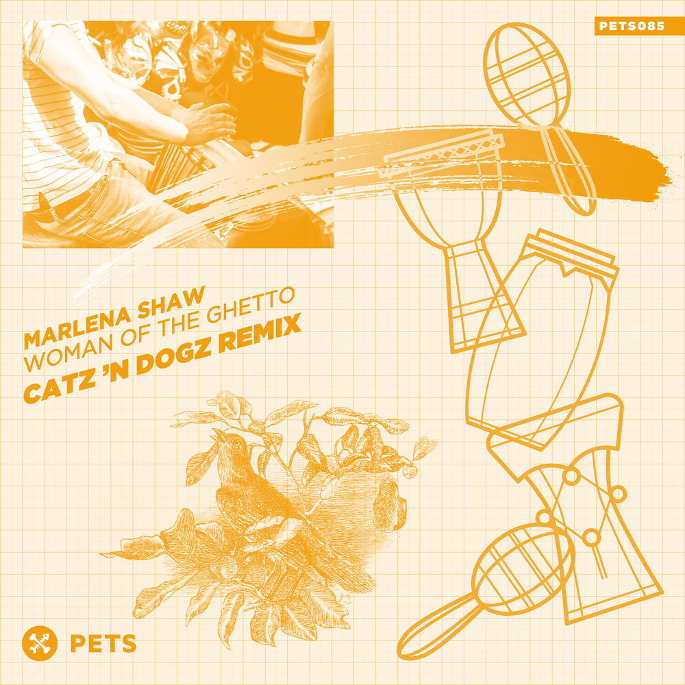 Marlena Shaw - Woman of the Ghetto (Catz 'n Dogz Remix) EP