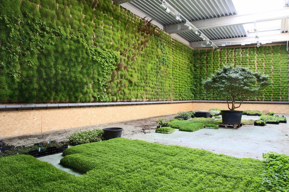 VGTEX est un support flexible de type « tout-en-un », qui permet de végétaliser durablement, n'importe quelle structure architecturale, quel que soit le support ou le niveau de pente et tout en maintenant une excellente étanchéité.