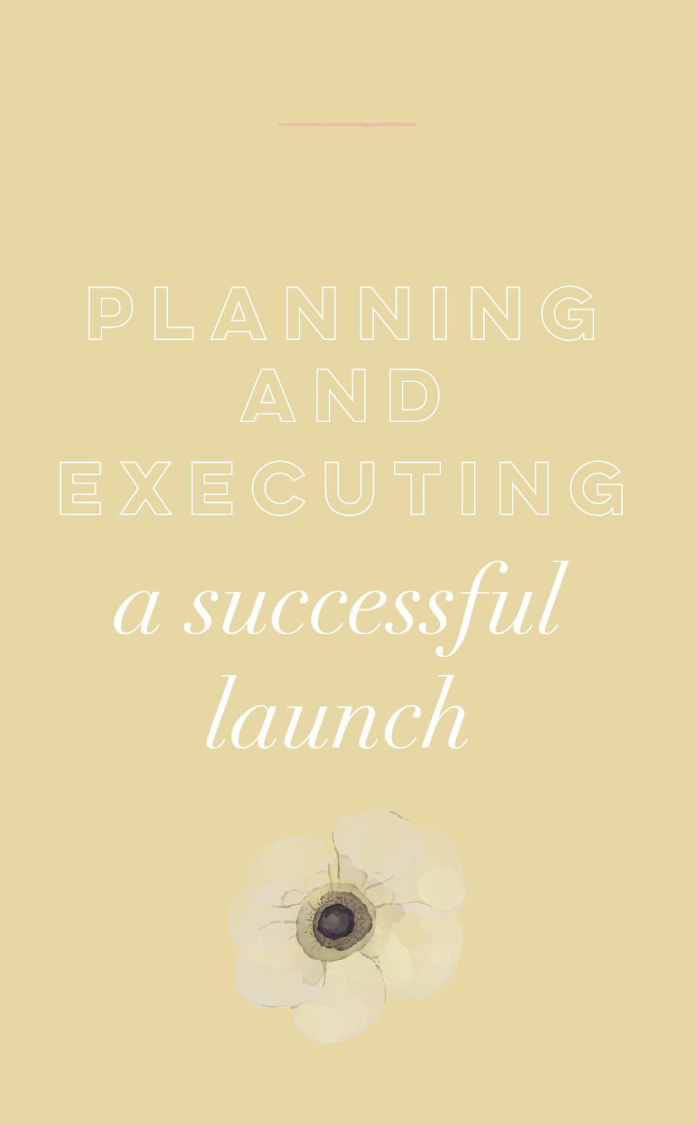 planningasuccessfullaunch.jpg