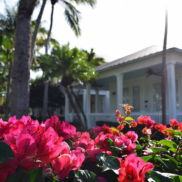 Did you have a dream about walking down a pedestrian-only island, where bright pink bougainvillea lined white picket fences and the next-door neighbors waved hello? At Sunset Key, you can wake up to that. #MySunsetKey