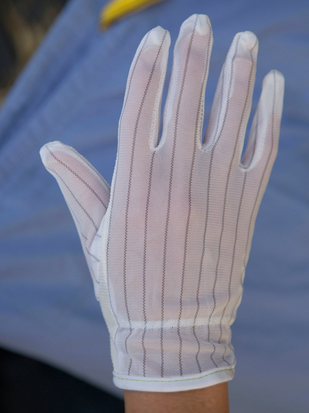 Lab gloves: lint-free, static-free (top view)