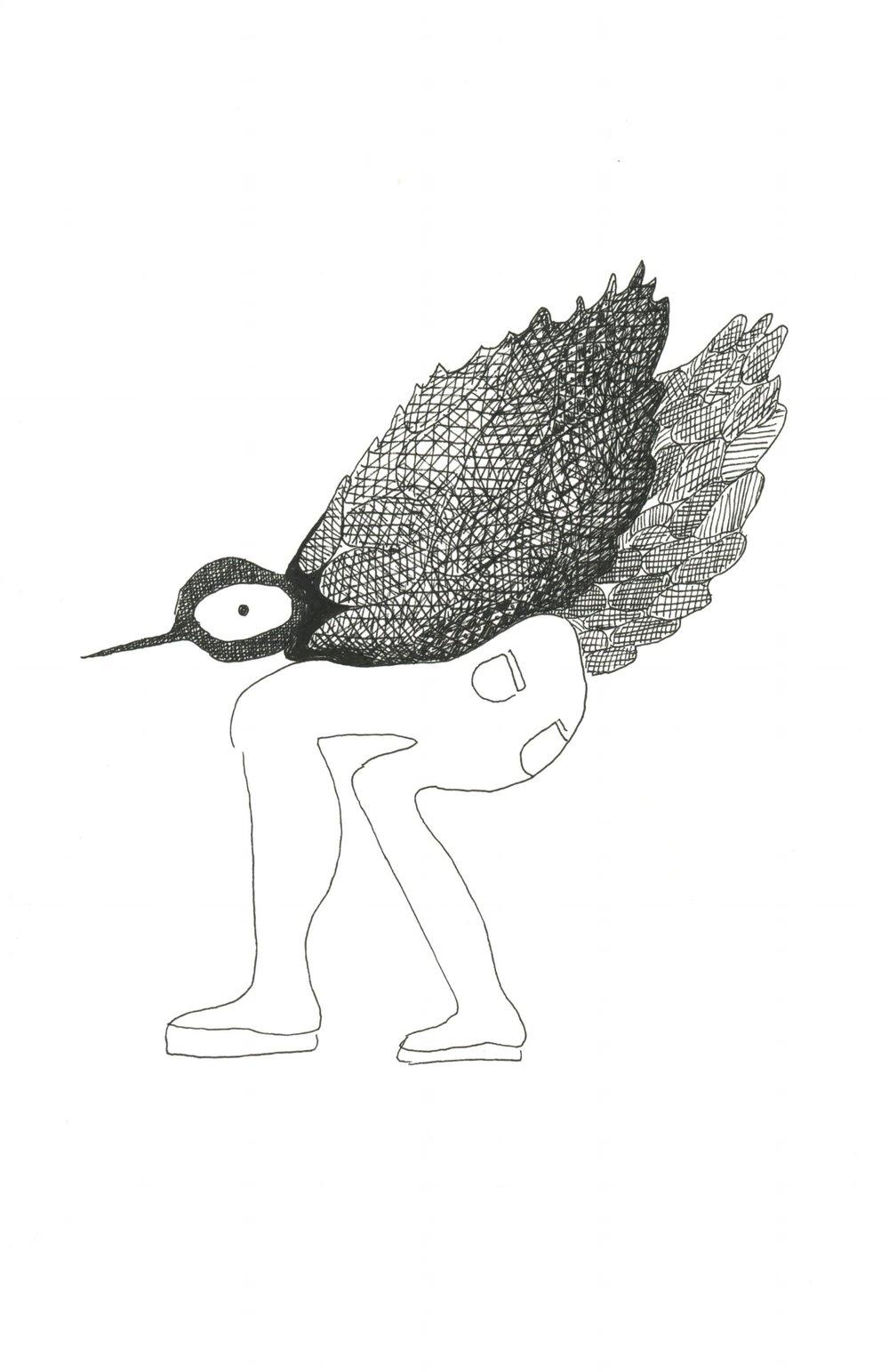 birddd.jpg