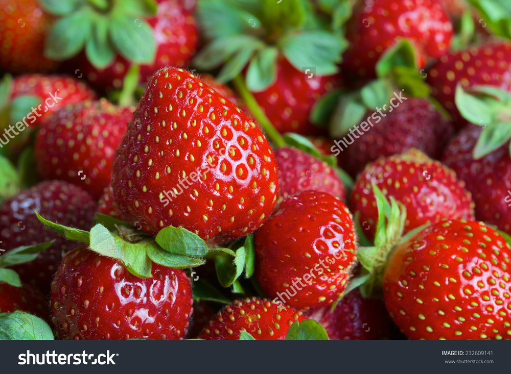 Fresh Organic Strawberries