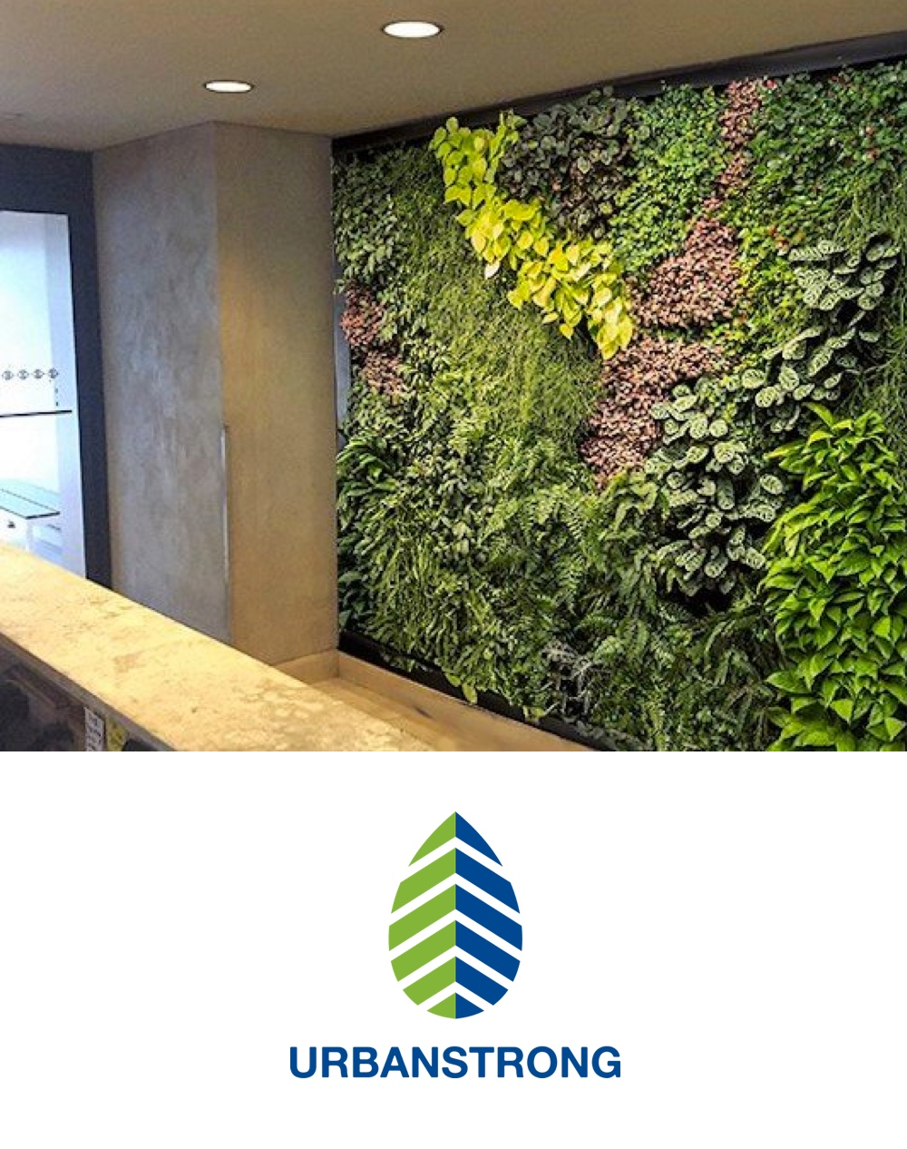 Green roofs, living walls, and green building technologies that boost property value, save energy, improve occupant health, and show commitment to the environment. -