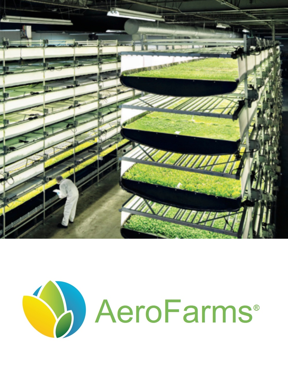 AeroFarms builds and operates environmentally responsible farms throughout the world to enable local production at scale and nourish our communities with safe, nutritious, and delicious food. -