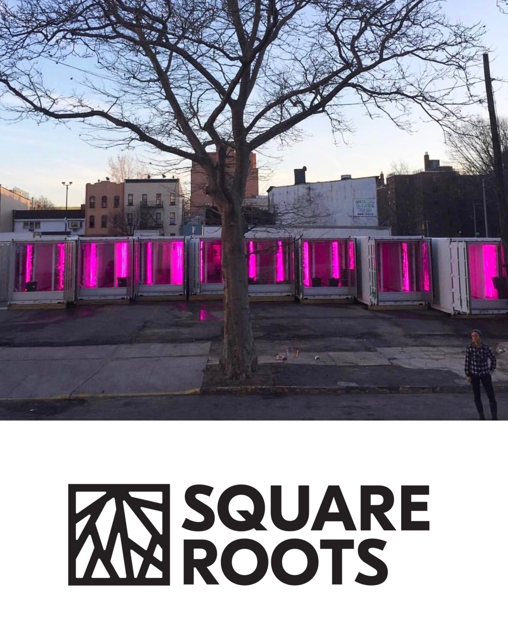 Square Roots is an urban farming accelerator—powered by human ingenuity, technology, and a deep love for local, real food. -