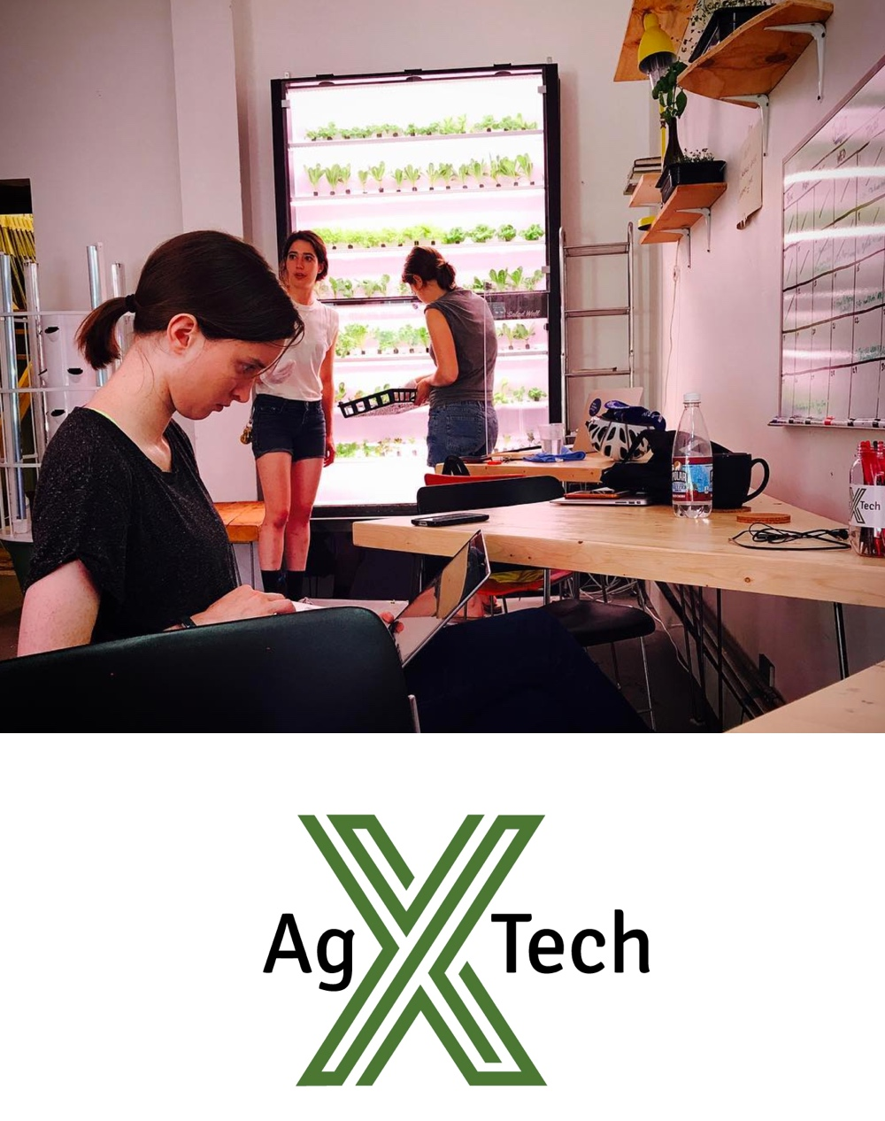 The AgTech X Co-Lab is a dedicated space for those looking to develop business concepts, pilot new projects, or launch their careers in AgTech & Urban Agriculture. -