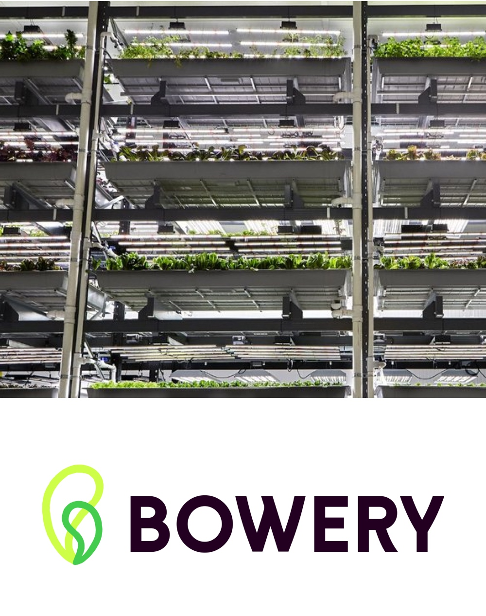 Bowery is the modern farming company growing the purest produce imaginable. We are on a mission to grow food for a better future by revolutionizing agriculture. -