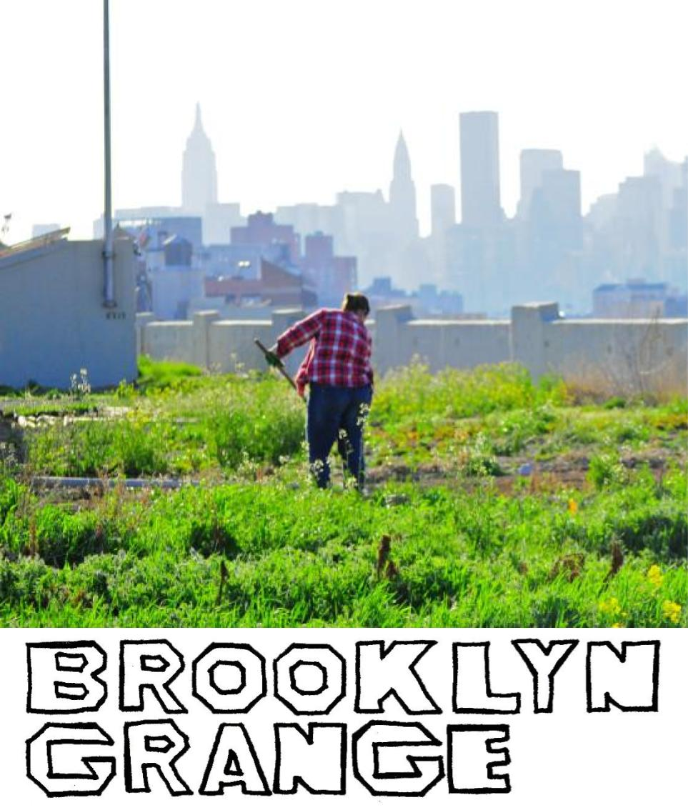 Brooklyn Grange farms rooftops, builds green spaces, and promotes sustainable living and local ecology through food, education, and events. -