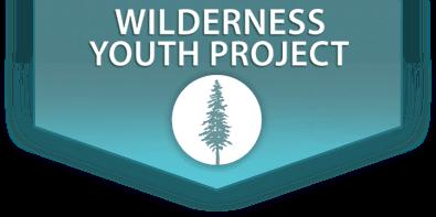 wyp-logo-2013.png
