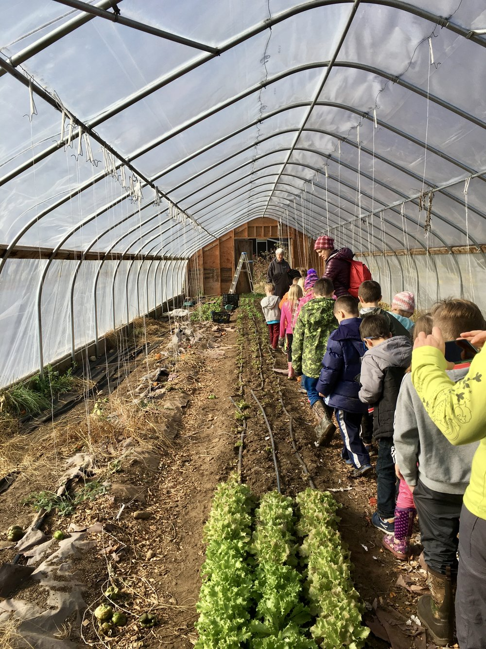 The first graders tour the greenhouse in late fall.