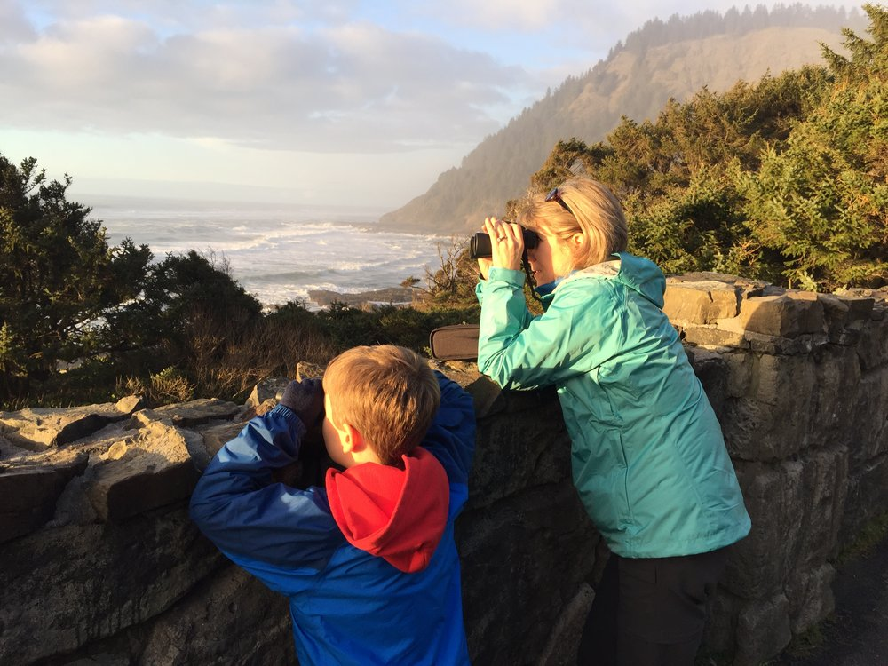 Looking for grey whales on Oregon coast.