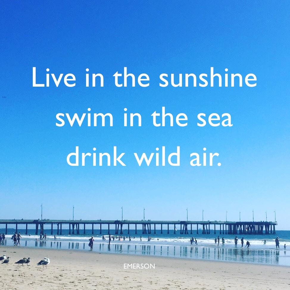 bestow-live-sunshine
