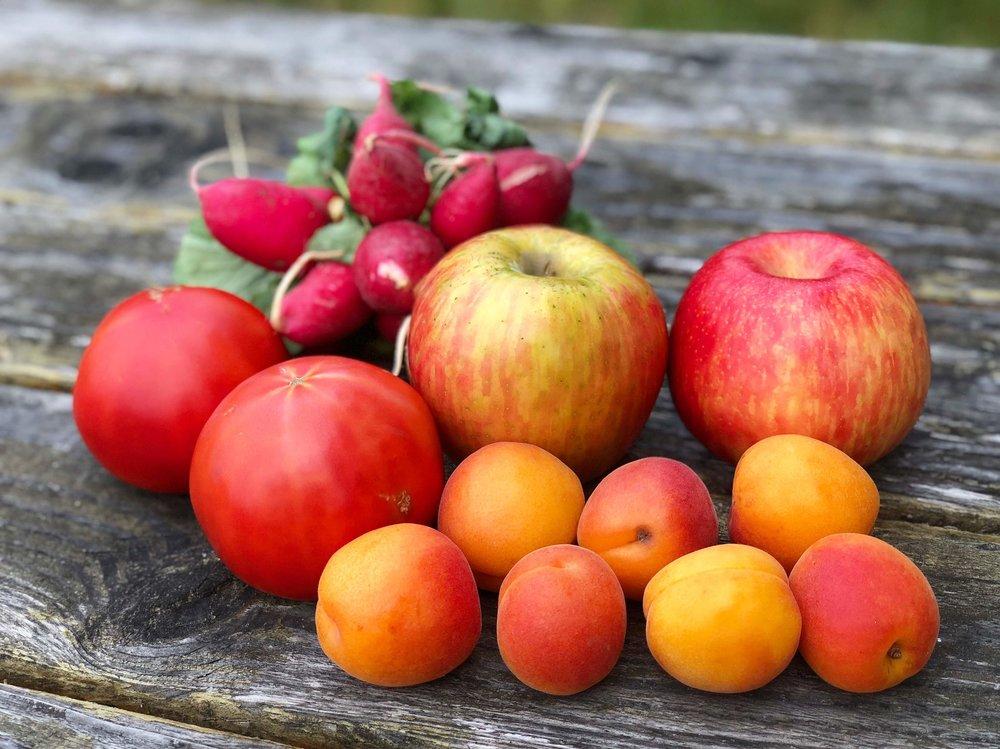 My Eastside Market choices: radishes, honey crisps, tomatoes, and apricots.