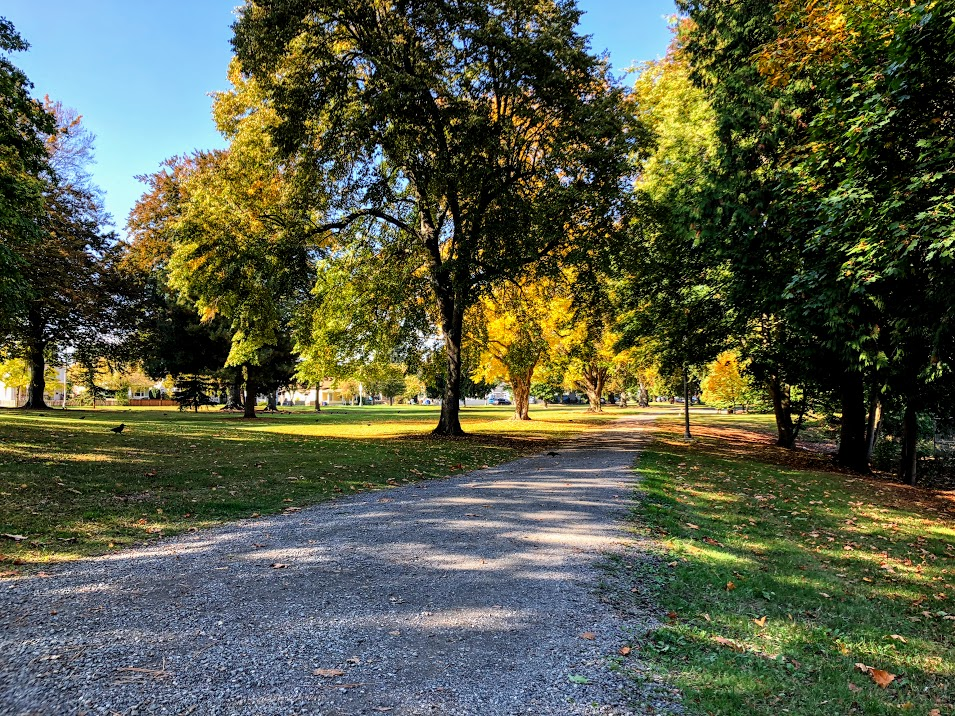 A shaded path through Lincoln Park toward the covered picnic area and playground.
