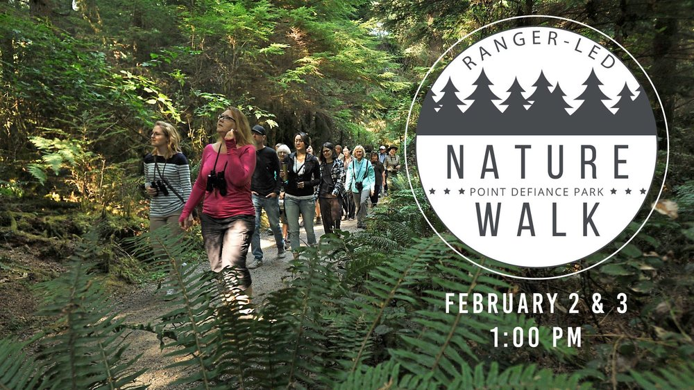 Image from the  Ranger-Led Nature Walk  event hosted by  Metro Parks Tacoma  &  Point Defiance Park