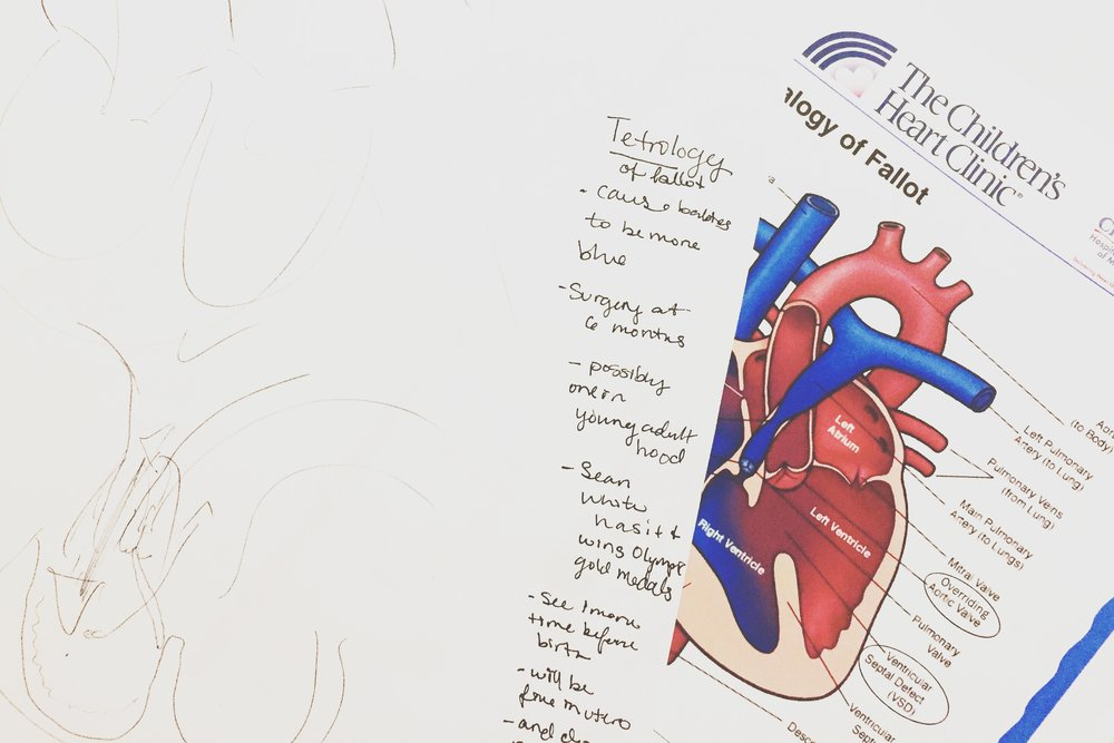 Doctor sketches, notes, and handouts – the first of many we'd receive.