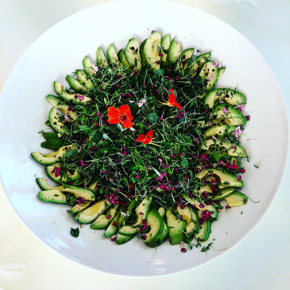 COOKING CLASSES - Chef Hyman creates a one of a kind food experience that transcends the perception healthy eating. He teaches people the art of mindful, and conscious eating, and incorporate it into your lives.