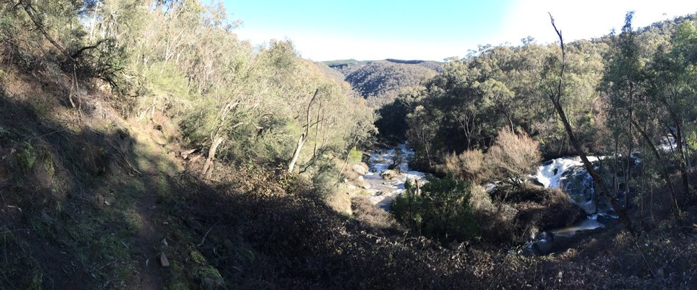 The lower reaches of Burra Creek