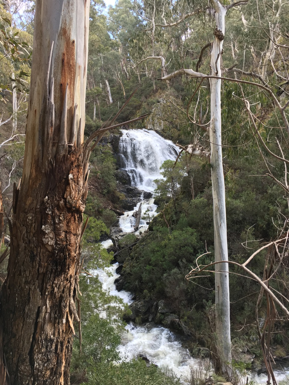 Budong Falls