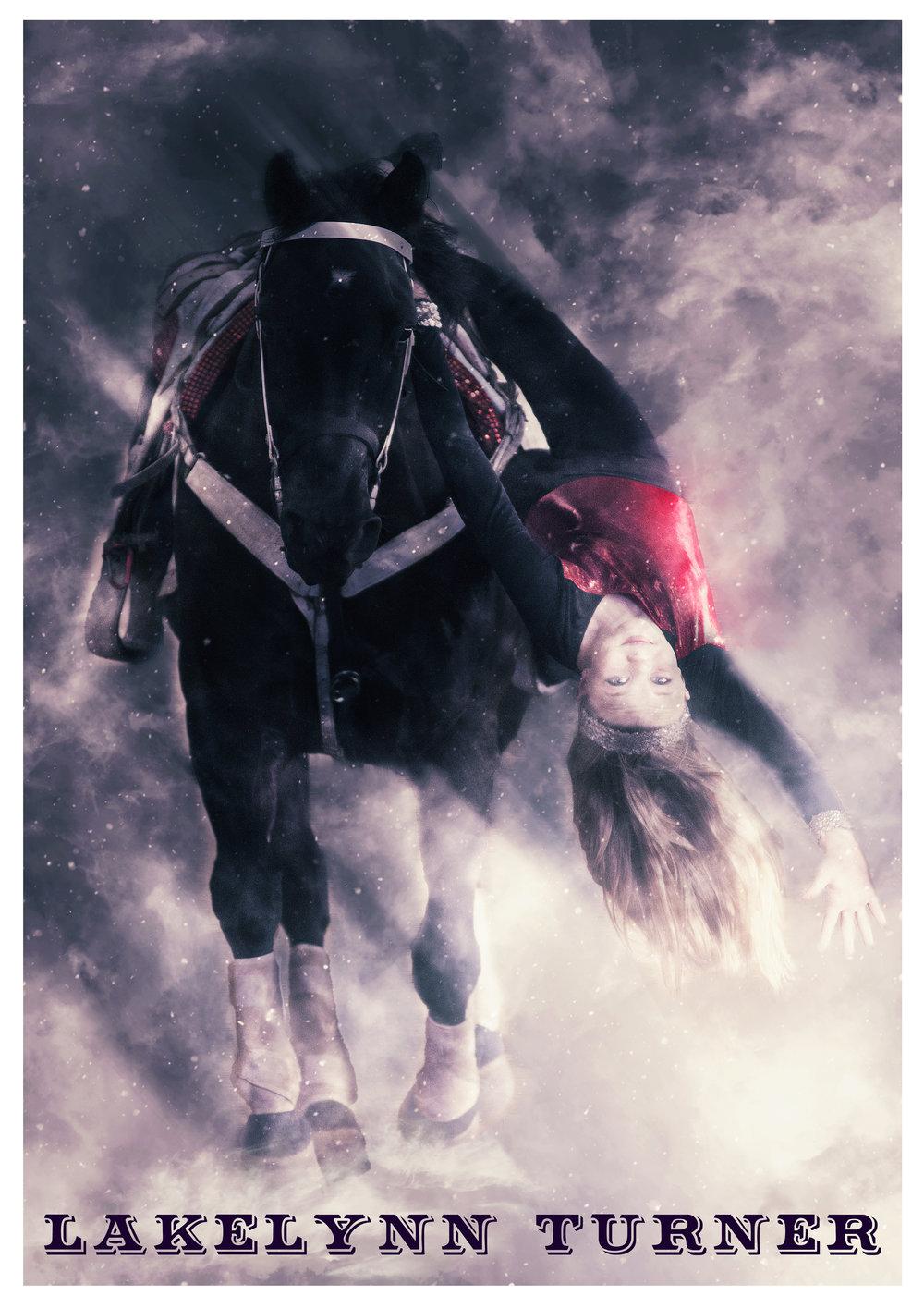 Lakelynn Poster 1.jpg