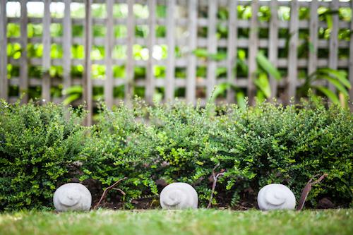 garden art 15.jpg
