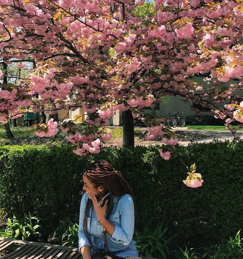 Kayla under pink trees pcfl.jpg
