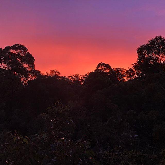 Purple rain #nofilter #sydneystorm