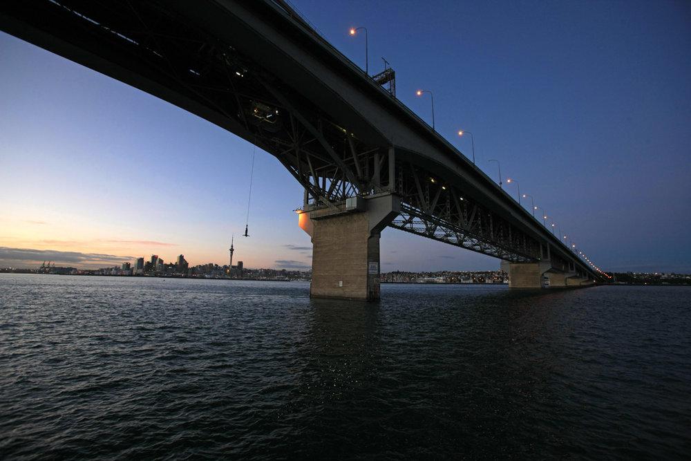 Auckland Bungy night.jpg