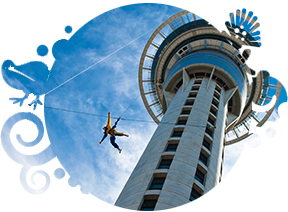 Auckland City Sightseeing Tour - Partner company tour