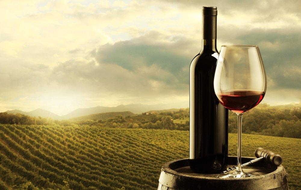 Premium Waiheke Wine Tour - From $99 - Partner company tour