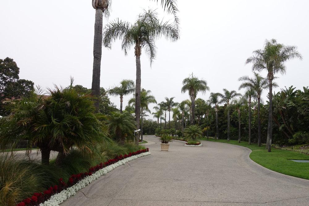 Laguna Nigel Driveway