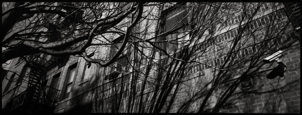 RG NYC12.jpg