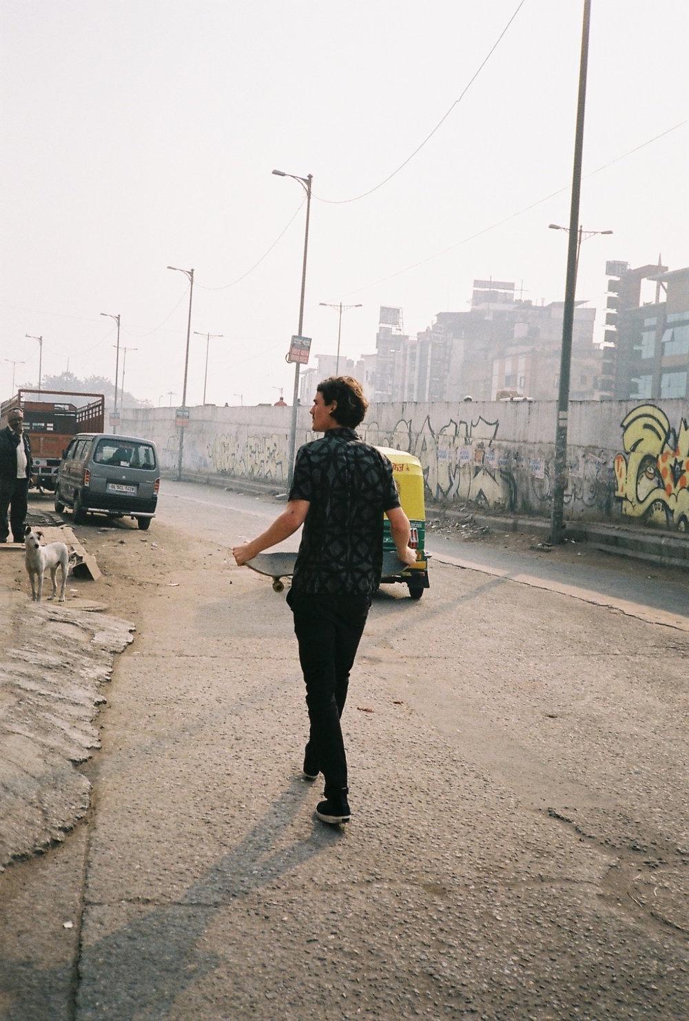 DELHI DOGS.jpg