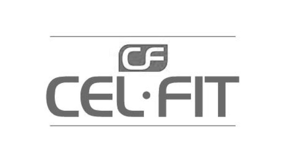 CDS 2017 logos.016.jpeg