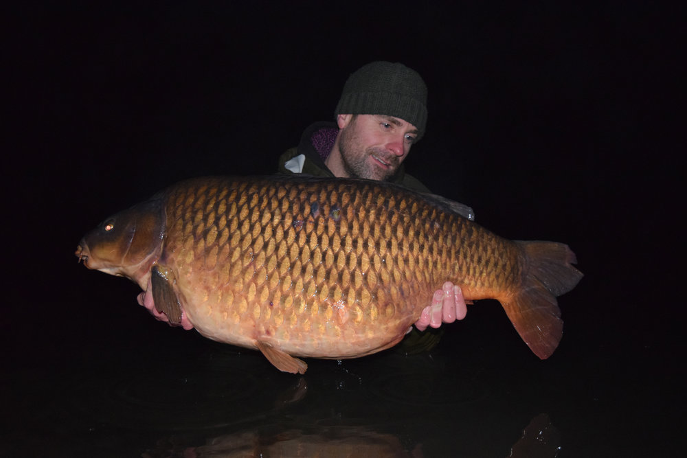 The Box Common didn't come in without a fight