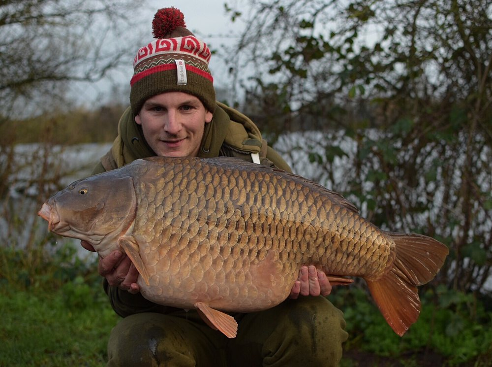 A 37lb 4oz common