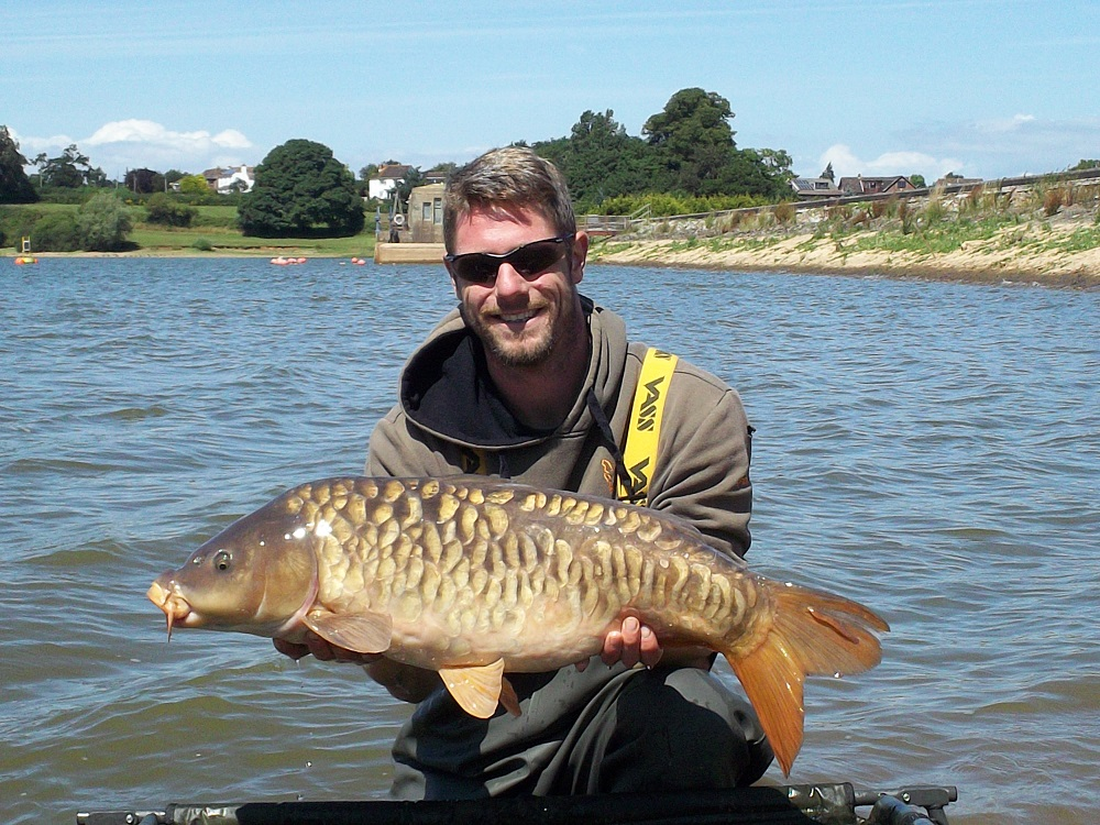 A scaly 20